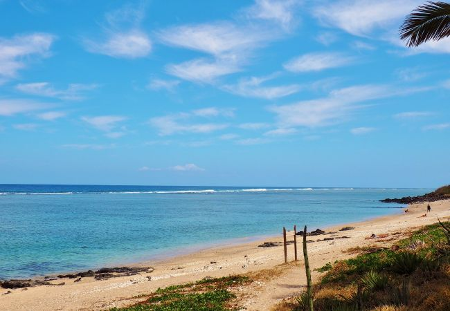 holiday rental accomodation in front of the beach of Saint gilles les bains in reunion island