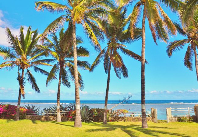 Villa to rent with 3 bedroom with tropical Home réunion