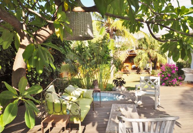 House for holiday with tropical home in reunion island