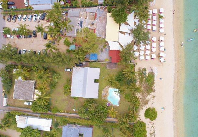 Tropical Home Réunion et la villa Ipanema, superbe location vacances