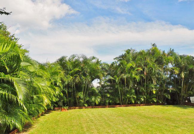 Jardin luxuriant et vue océan pour vos vacances tropical home
