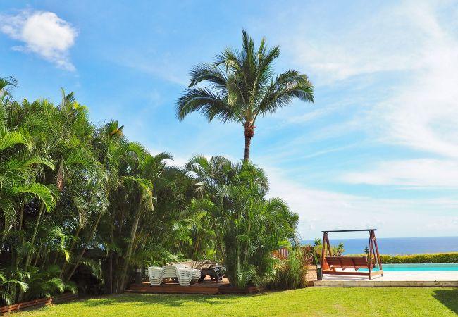 Magnifique jardin à la Réunion dans la villa champagne