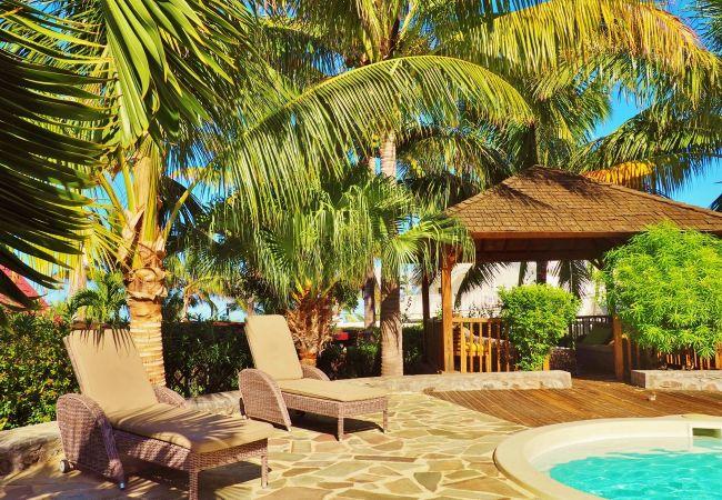 Maison à louer avec piscine et jardin sur tropical home réunion