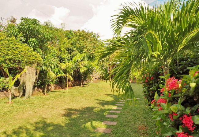 Tropcical home aime la villa mado-ray avec un jardin luxuriant