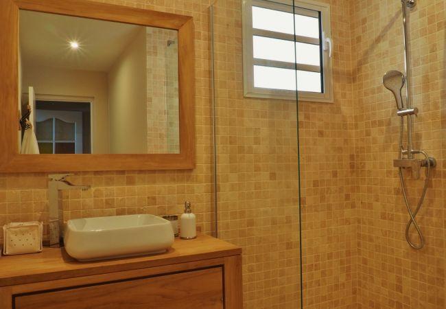 location saisonnière tropical home avec belle salle de bains