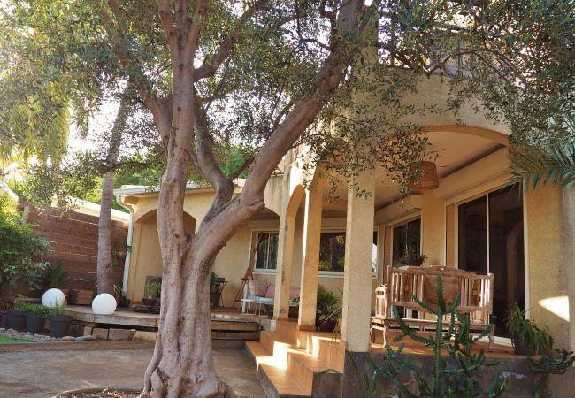 Terrasses dans la villa de vacances Mademoiselle à la Réunion