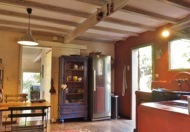 superbe villa tropical home à la réunion avec cuisine équipée