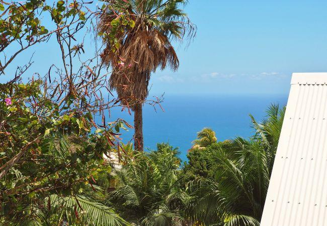 Location d'une belle maison neuve à la Montagne (la Réunion)