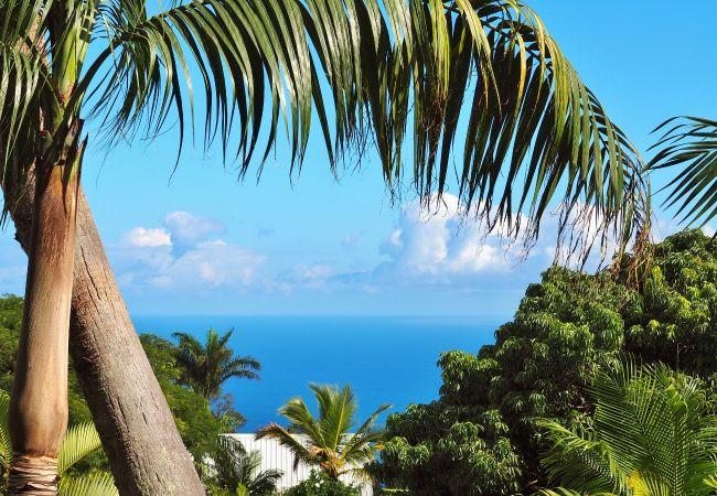 Villa de luxe à la Réunion à louer