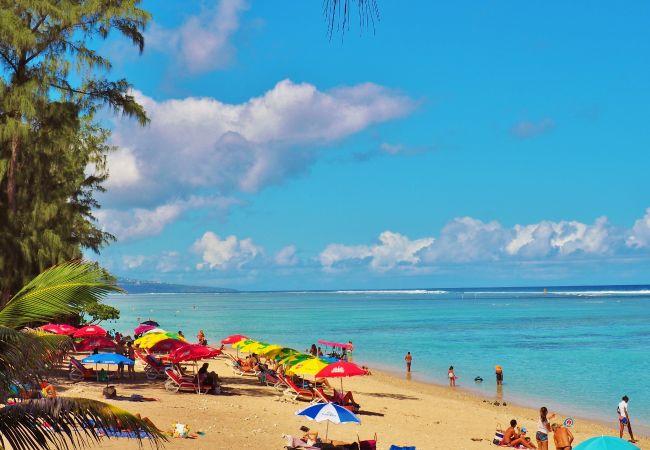 Villa 66 avec piscine et accès plage et lagon