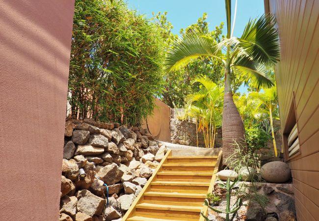 Des locations de vacances de rêve avec Tropical Home Réunion
