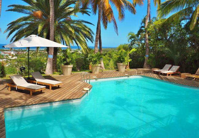 Splendide piscine dans une location de vacances 974