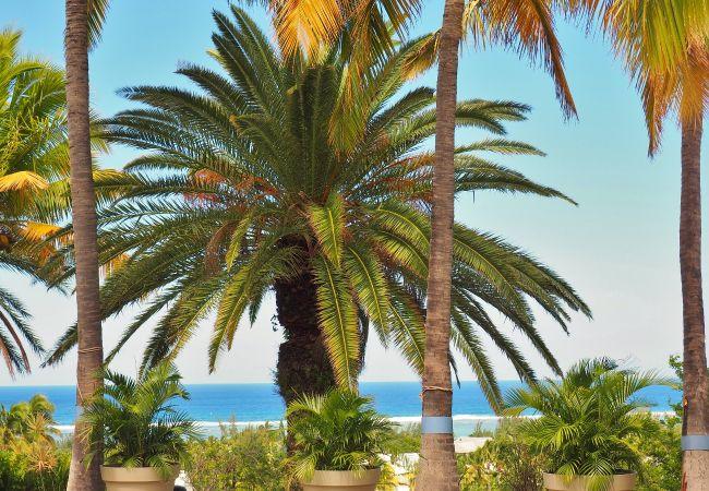 Villa avec vue panoramique sur l'océan vacances à la Réunion