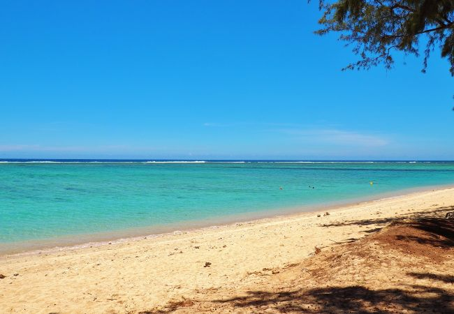 Plus belle location de vacances à la Réunion