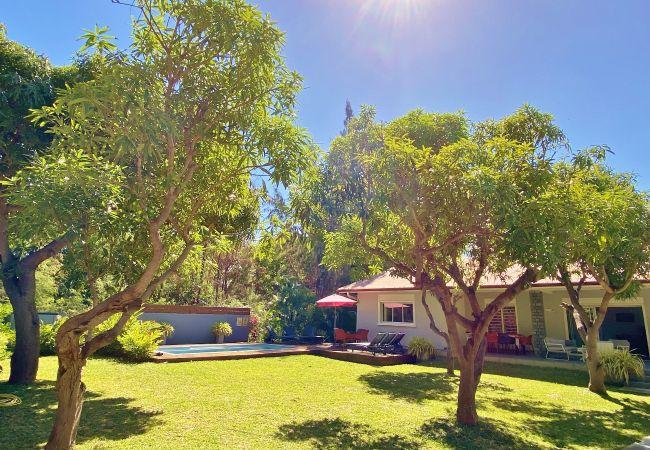 La villa Manguiers une location saisonnière Tropical Home