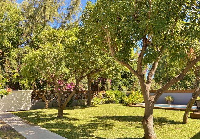 Une maison de vacances Tropical Home à la Réunion