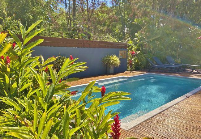 Tropical Home est la référence de la location de vacances à la Réunion